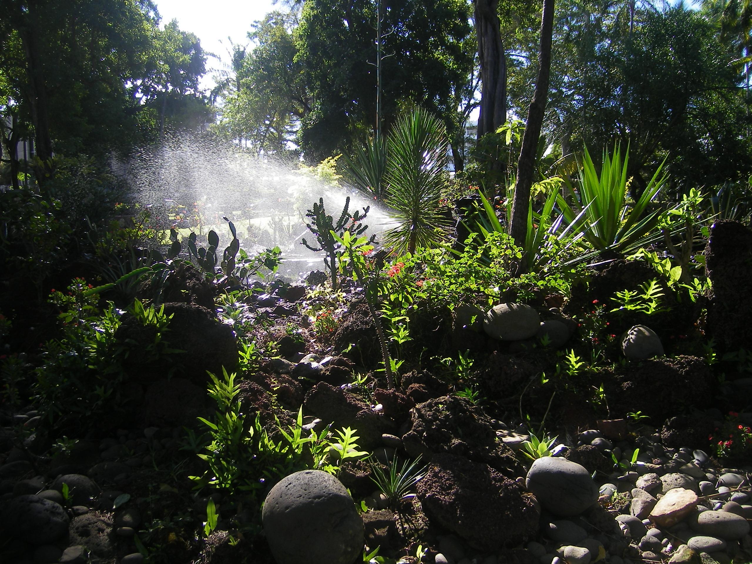 Le jardin de l etat le mhn de st denis de la reunion claire line 39 s travelogues - Jardin potager bio saint denis ...