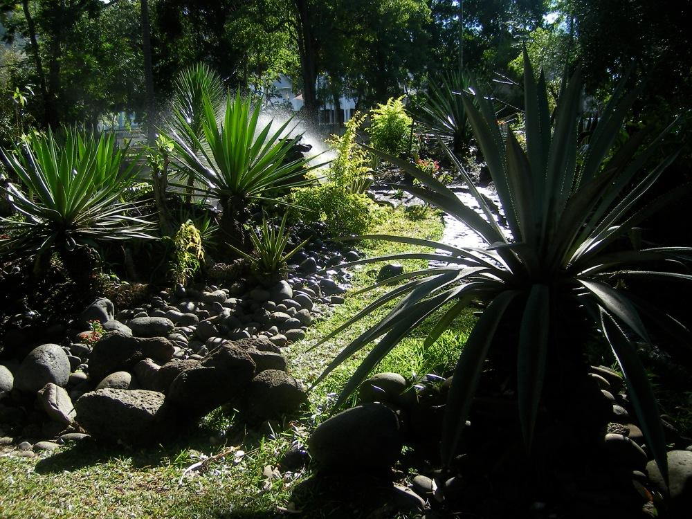 Jardin d'Etat - St-Denis (3)