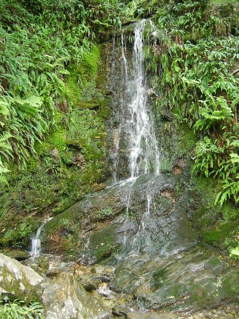 Jolie petite cascade a Glendalough juillet 2007 Irlande