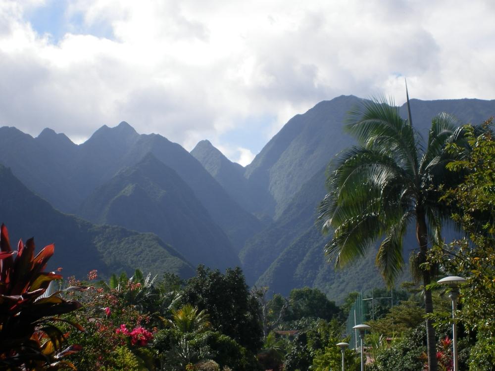 Le Dimitile - L'entre-deux - Île de la réunion (2)
