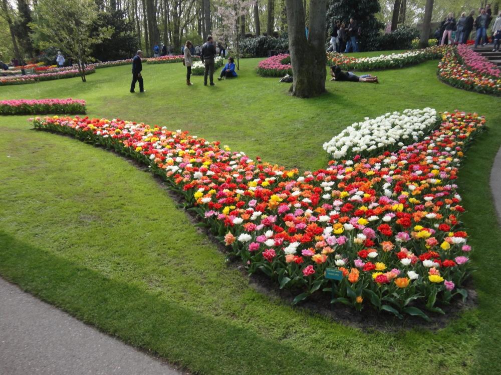 Keukenhof - Composition florale inspirée.
