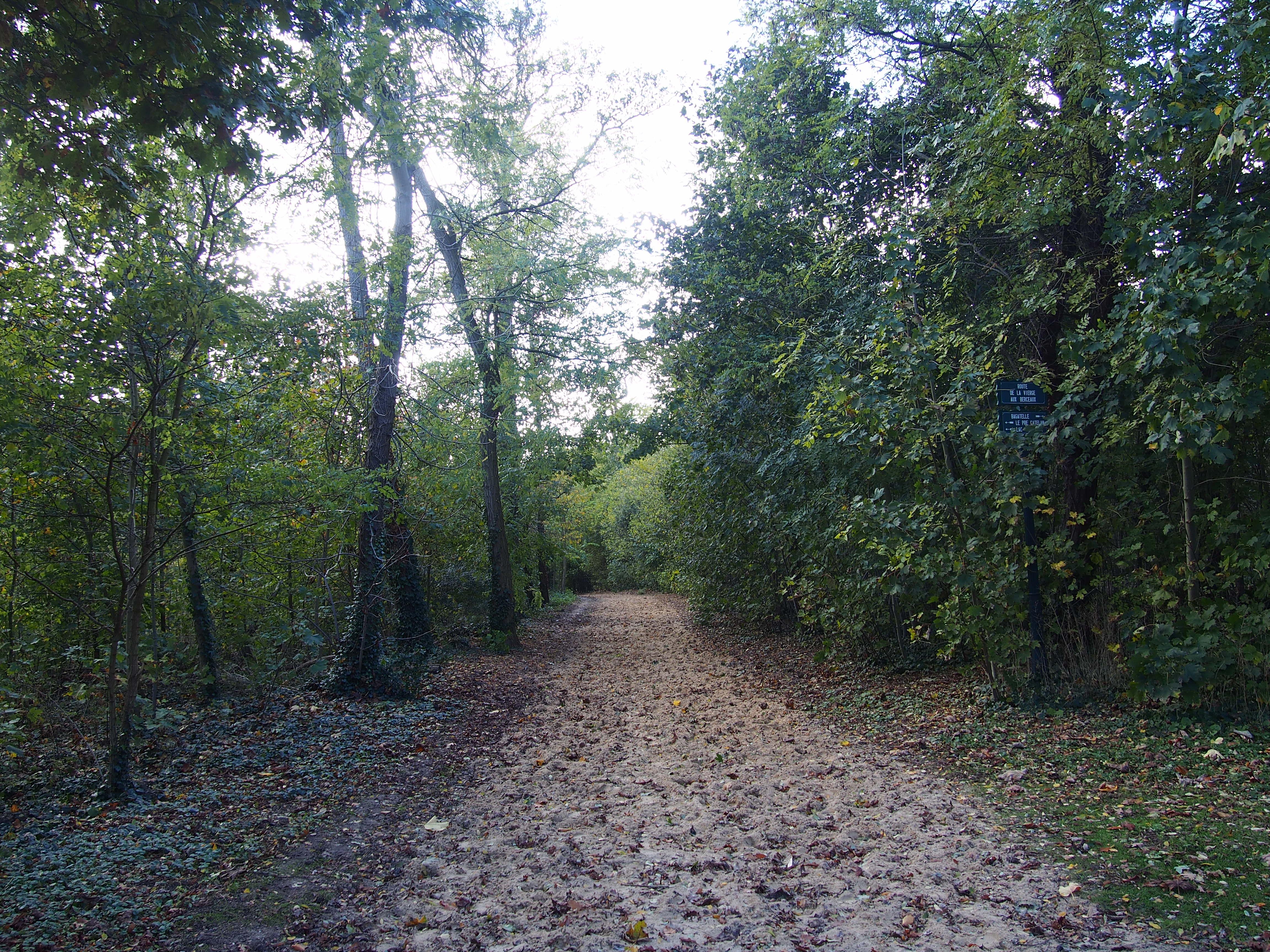 Location Velo Bois De Boulogne - Location Velo Bois De Boulogne u2013 Myqto com