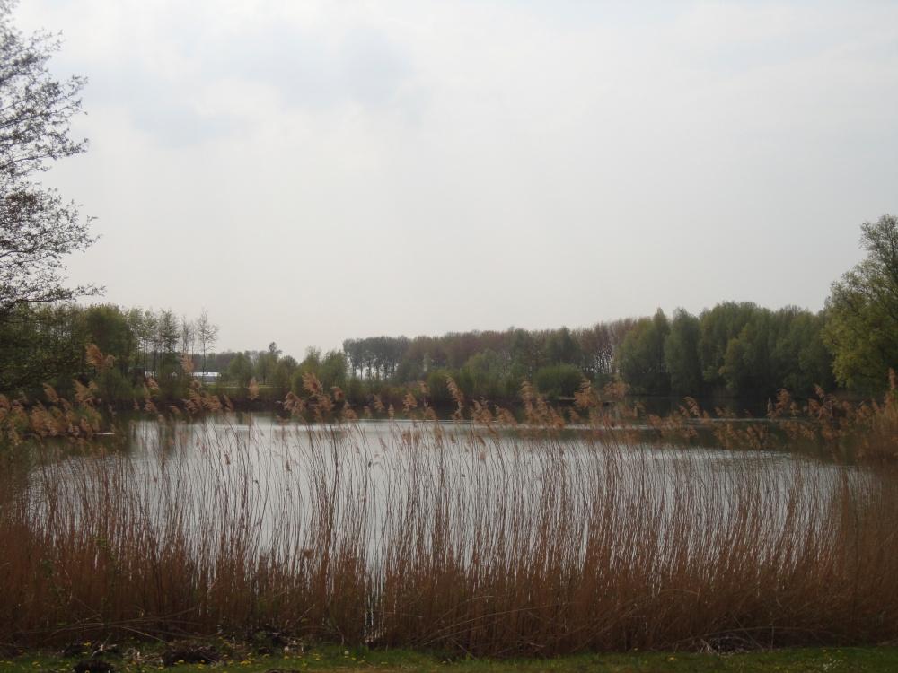 Walibi sur le Polder aux Pays-Bas - 142