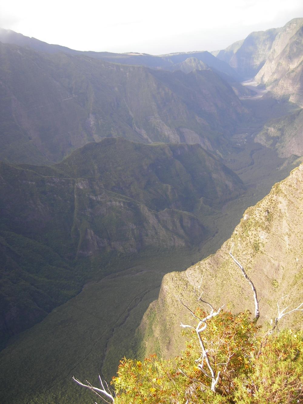 Le nez de boeuf - les hautes plaines - île de la reunion (3)