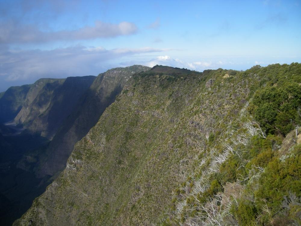Le nez de boeuf - les hautes plaines - île de la reunion (4)