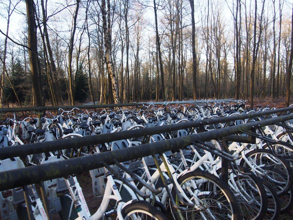 Veluwe park vélos