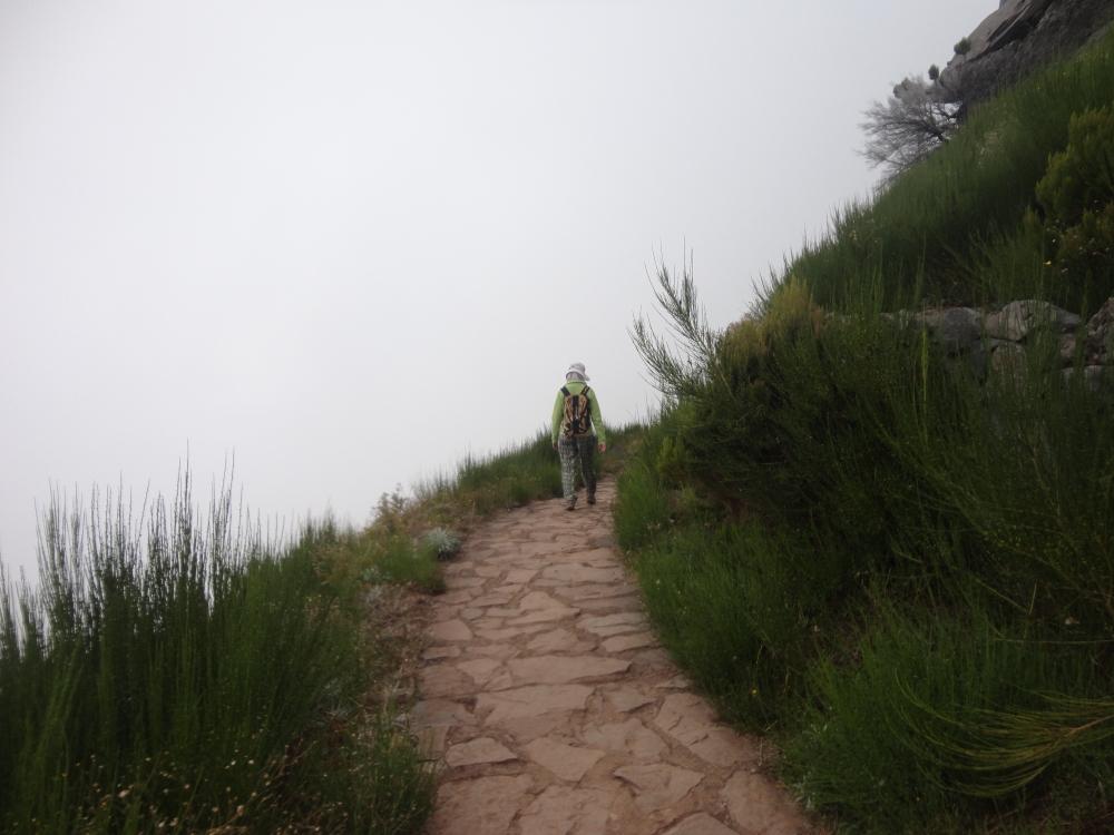 Pico Ruivo claireline.wordpress.com6567