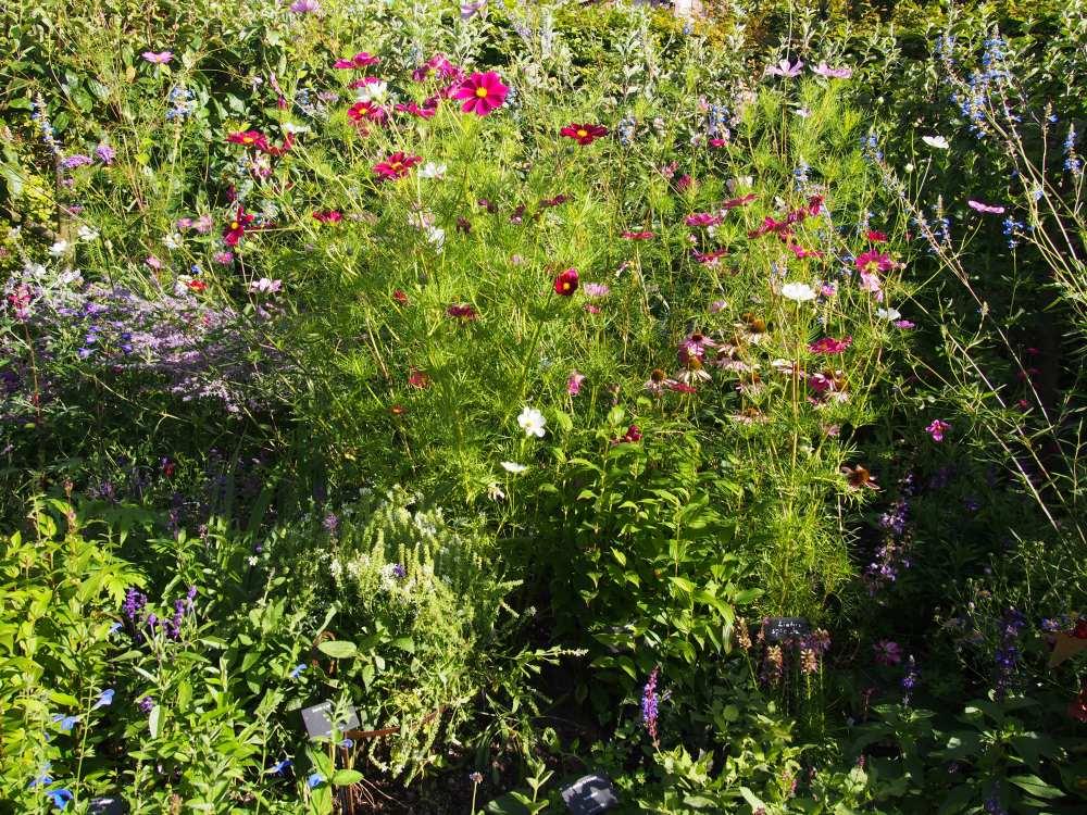 jardindescinqsens.Claire-Line's travelogues.com21