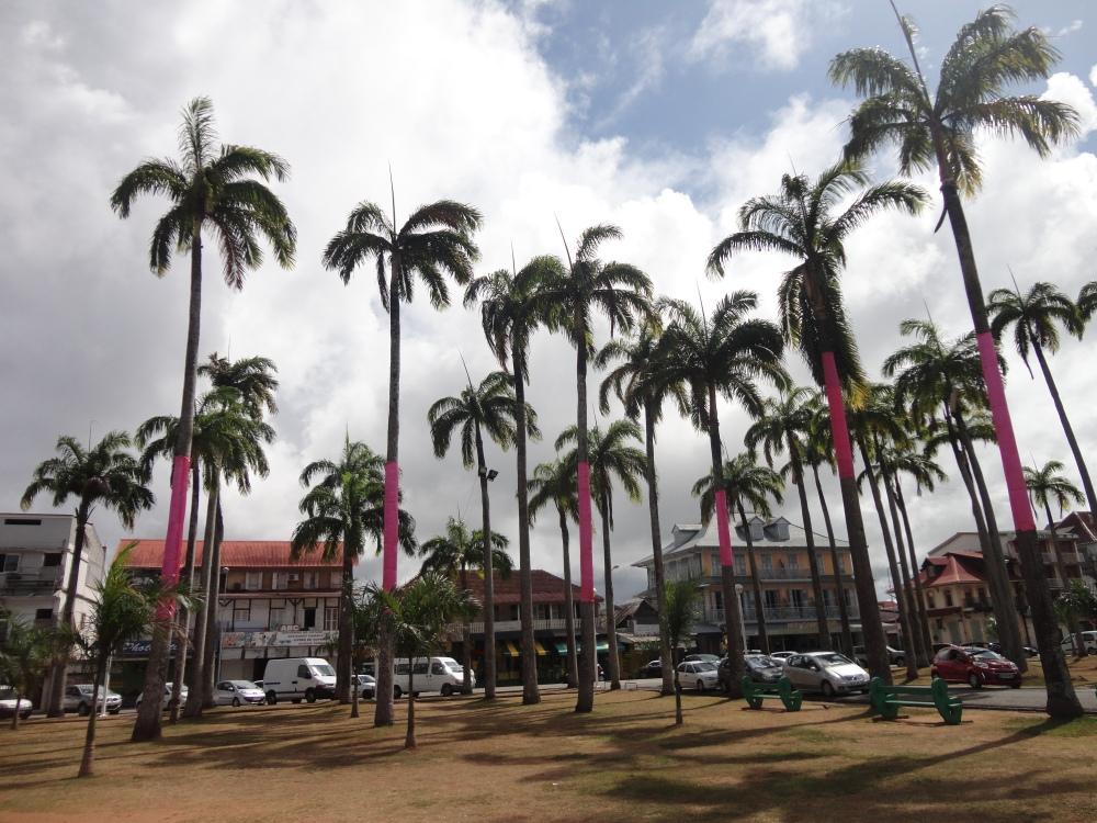 claireline.wordpress.com_GuyaneJ2