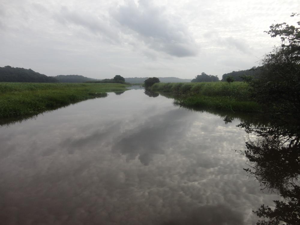 Marais de Kaw_claireline.wordpress.com