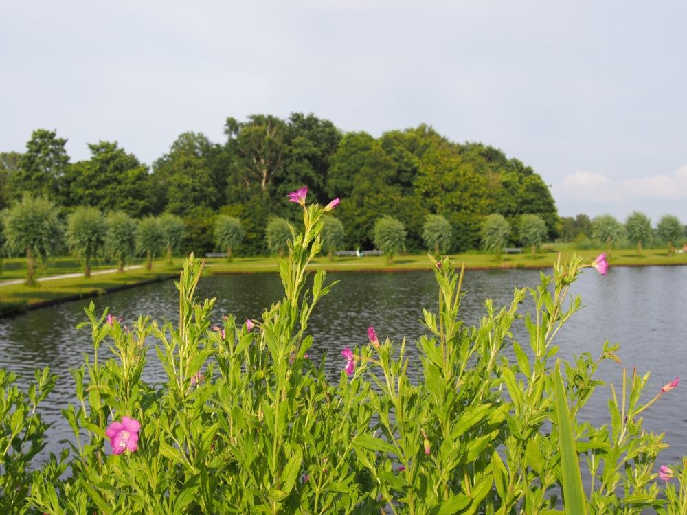 claireline.wordpress.com_Leeuwarden