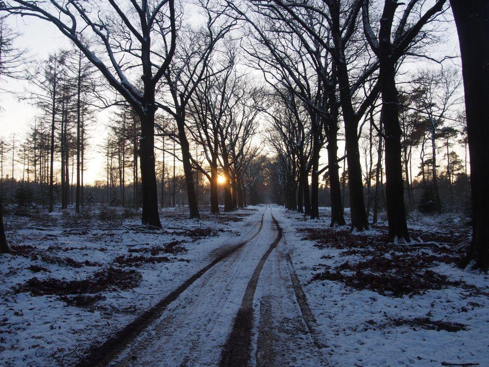 De Hoge Veluwe_claireline.wordpress.com