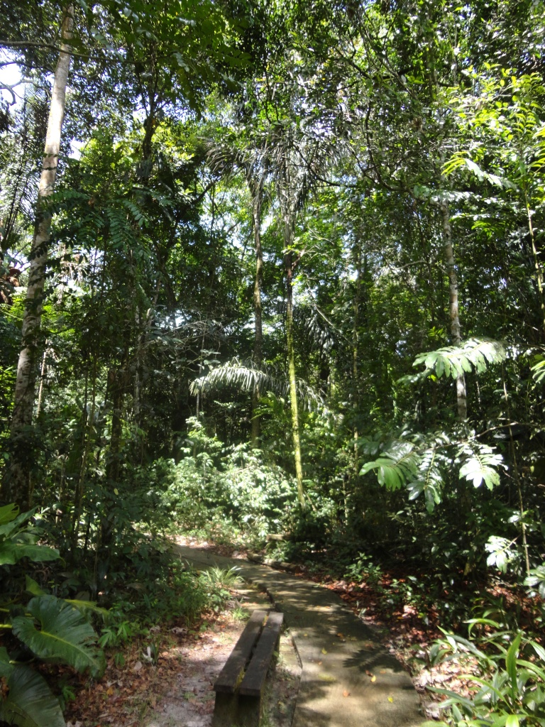 Zoo_de_Guyane_claireline.wordpress.com29