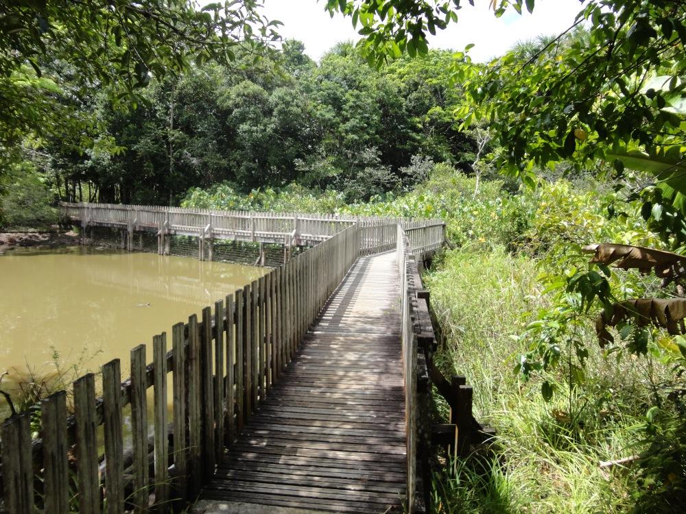 Zoo_de_Guyane_claireline.wordpress.com32