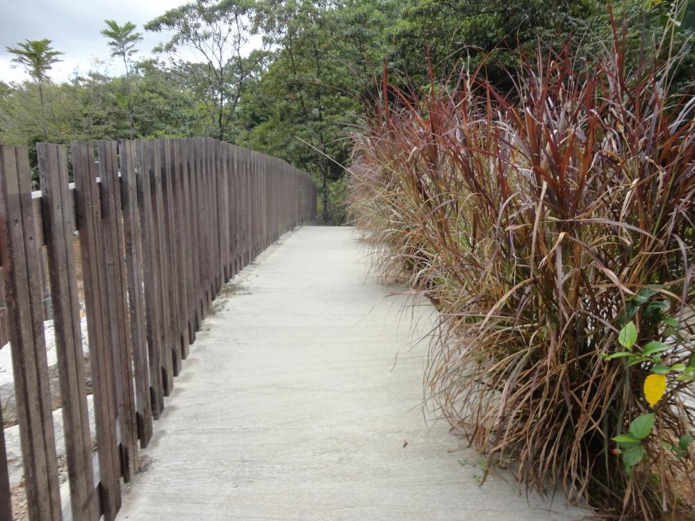 Zoo_de_Guyane_claireline.wordpress.com33